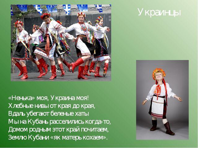 «Ненька» моя, Украина моя! Хлебные нивы от края до края, Вдаль убегают белены...