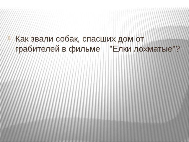 """Как звали собак, спасших дом от грабителей в фильме """"Елки лохматые""""?"""