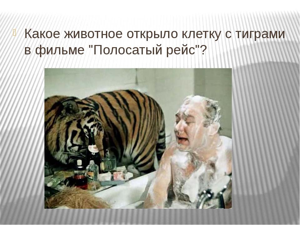 """Какое животное открыло клетку с тиграми в фильме """"Полосатый рейс""""?"""