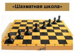 «Шахматная школа»