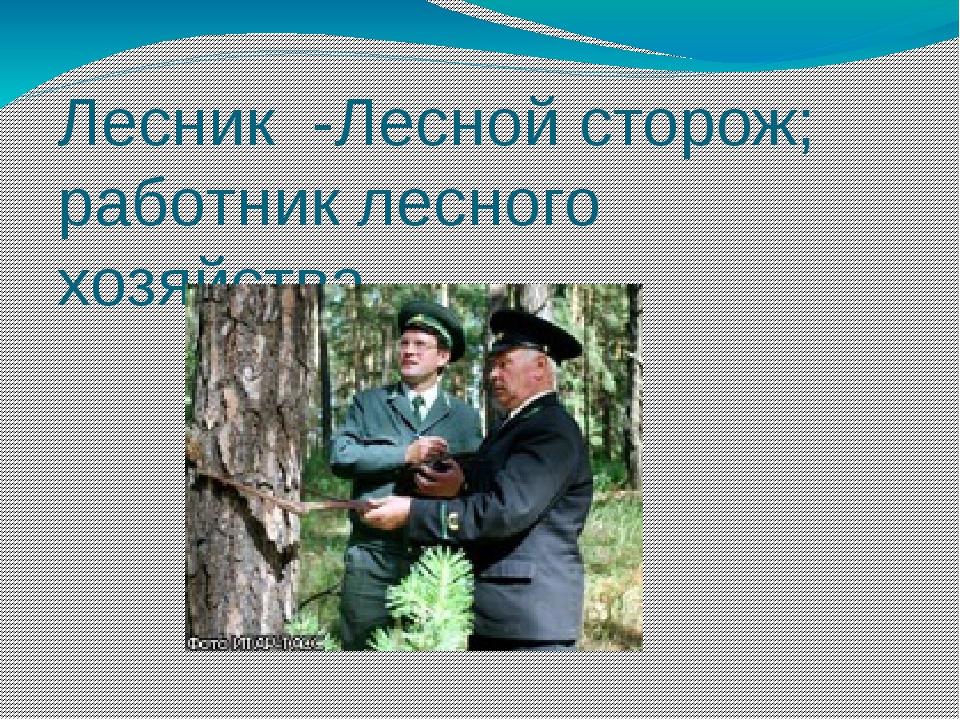 Лесник -Лесной сторож; работник лесного хозяйства.