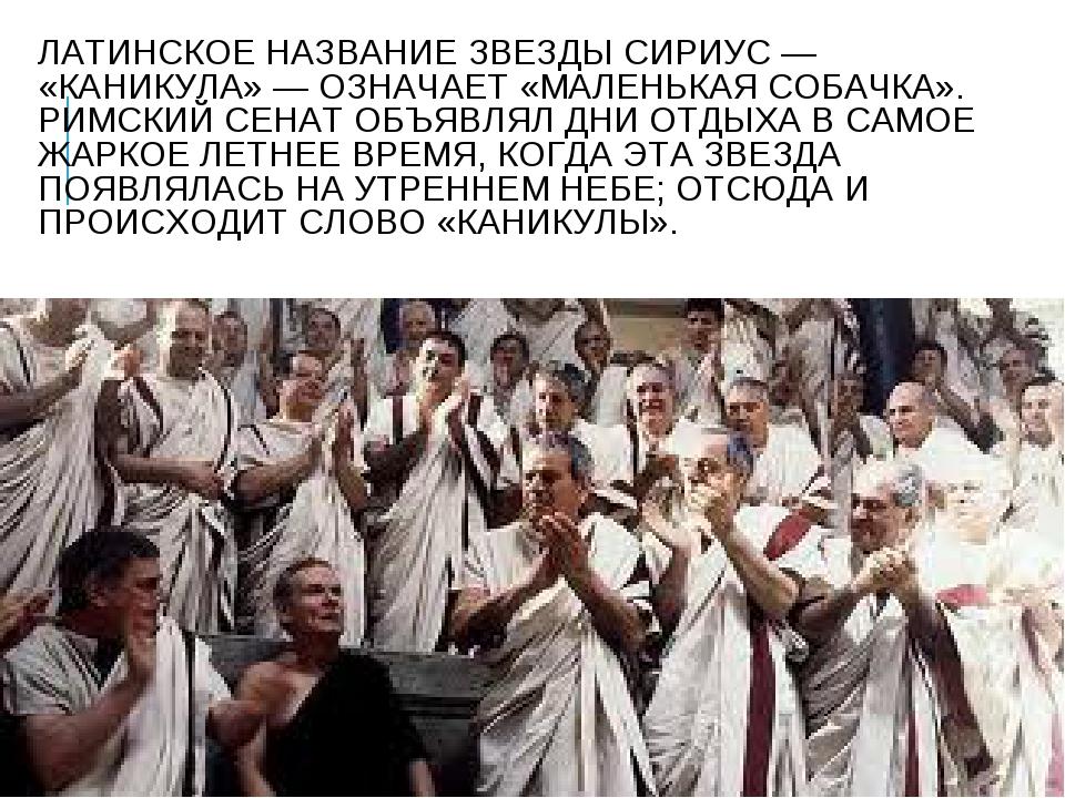 ЛАТИНСКОЕ НАЗВАНИЕ ЗВЕЗДЫ СИРИУС — «КАНИКУЛА» — ОЗНАЧАЕТ «МАЛЕНЬКАЯ СОБАЧКА»....
