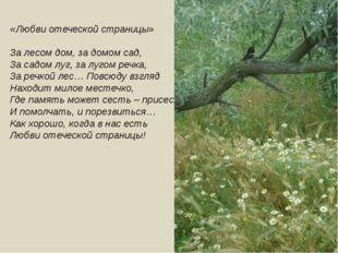 «Любви отеческой страницы» За лесом дом, за домом сад, За садом луг, за лугом
