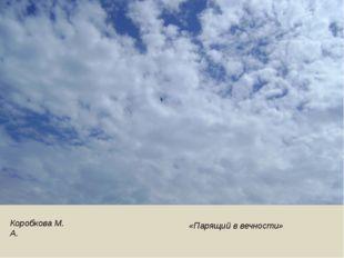 Коробкова М. А. «Парящий в вечности»