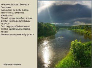 «Распогодилось. Ветер в бессилье Затихает до ряби в реке. Темно-синих стрекоз