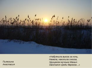 Пилюгина Анастасия «Набуянила вьюга за ночь, Намела, накопила снегов, Хрущако