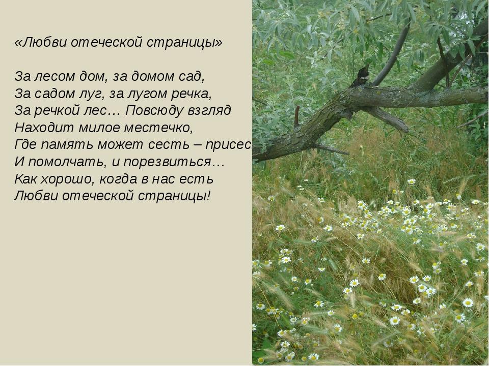 «Любви отеческой страницы» За лесом дом, за домом сад, За садом луг, за лугом...