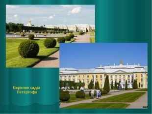 Верхние сады Петергофа