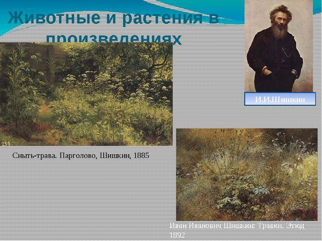 Животные и растения в произведениях художников Сныть-трава. Парголово, Шишкин...
