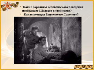 Какие варианты человеческого поведения изображает Шолохов в этой сцене? Кака
