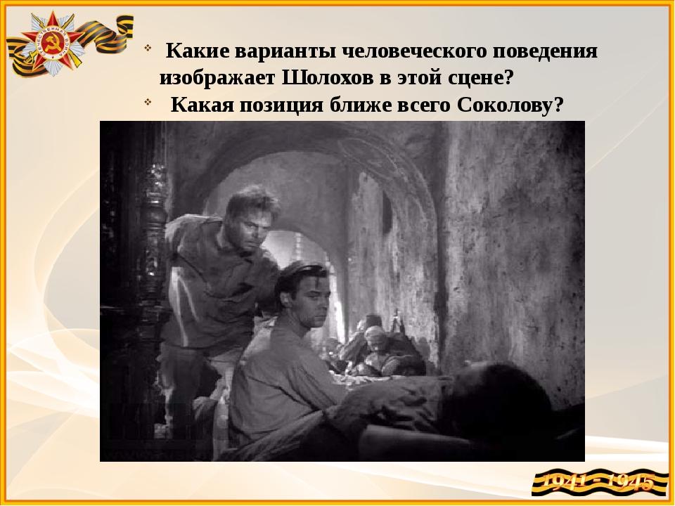 Какие варианты человеческого поведения изображает Шолохов в этой сцене? Кака...