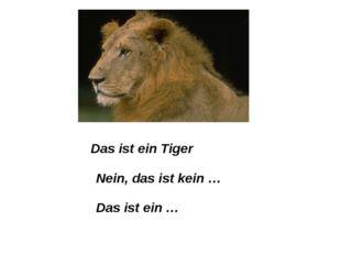 Das ist ein Tiger Nein, das ist kein … Das ist ein …