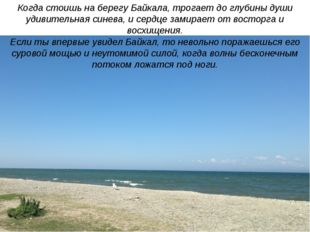 Когда стоишь на берегу Байкала, трогает до глубины души удивительная синева,