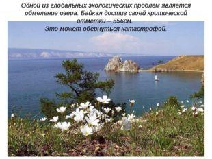Одной из глобальных экологических проблем является обмеление озера. Байкал до