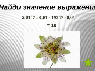 Считаем устно (ручеек) а) 6,3 : 3 е) 2,4 : 10 б) 0,8 : 0,4 л) 0,7 • 2 в) 0,5