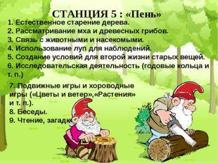 СТАНЦИЯ 5 : «Пень» 1. Естественное старение дерева. 2. Рассматривание мха и д