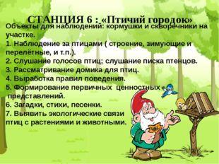 СТАНЦИЯ 6 : «Птичий городок» Объекты для наблюдений: кормушки и скворечники н