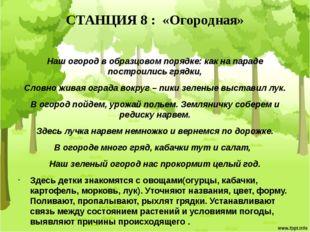 СТАНЦИЯ 8 : «Огородная» Наш огород в образцовом порядке: как на параде постро