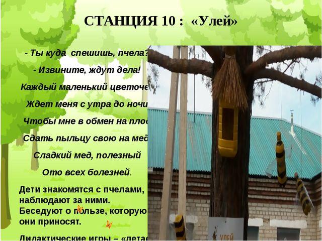 СТАНЦИЯ 10 : «Улей» - Ты куда спешишь, пчела? - Извините, ждут дела! Каждый м...