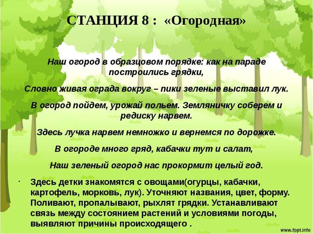 СТАНЦИЯ 8 : «Огородная» Наш огород в образцовом порядке: как на параде постро...