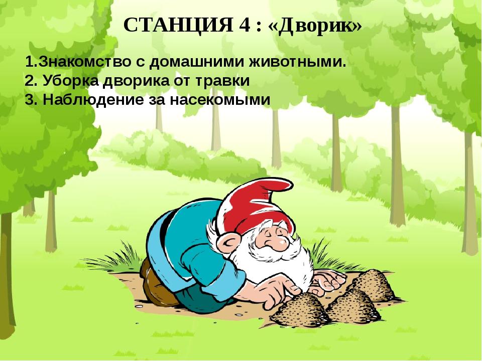 СТАНЦИЯ 4 : «Дворик» 1.Знакомство с домашними животными. 2. Уборка дворика от...