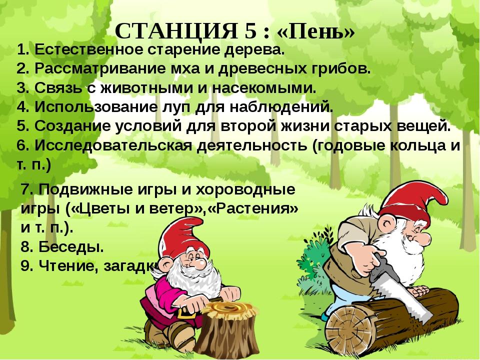 СТАНЦИЯ 5 : «Пень» 1. Естественное старение дерева. 2. Рассматривание мха и д...