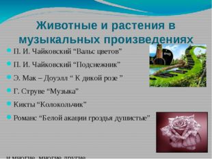 """Животные и растения в музыкальных произведениях П. И. Чайковский """"Вальс цвето"""