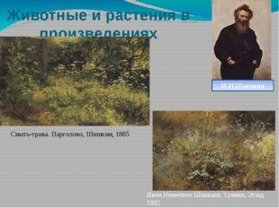 Животные и растения в произведениях художников Сныть-трава. Парголово, Шишкин