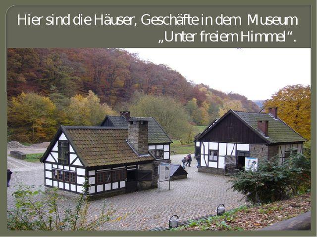 """Hier sind die Häuser, Geschäfte in dem Museum """"Unter freiem Himmel""""."""
