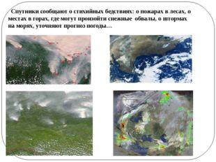 Спутники сообщают о стихийных бедствиях: о пожарах в лесах, о местах в горах