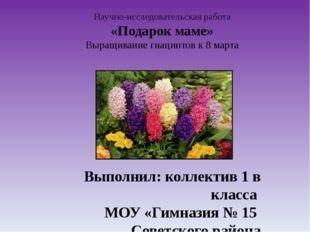 Научно-исследовательская работа «Подарок маме» Выращивание гиацинтов к 8 март