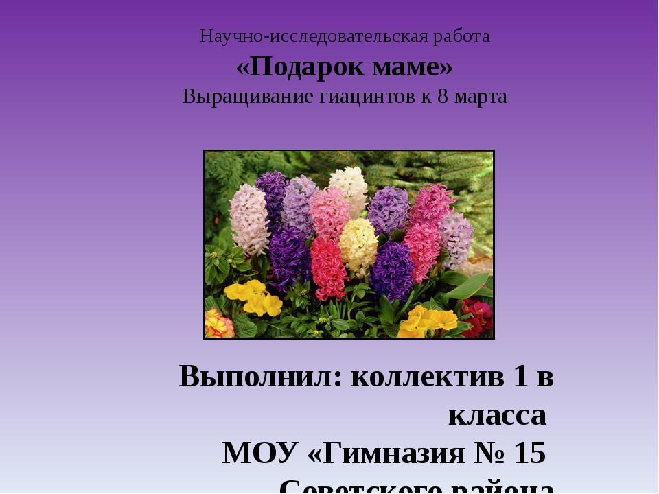 Научно-исследовательская работа «Подарок маме» Выращивание гиацинтов к 8 март...