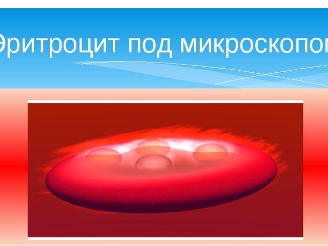 Эритроцит под микроскопом