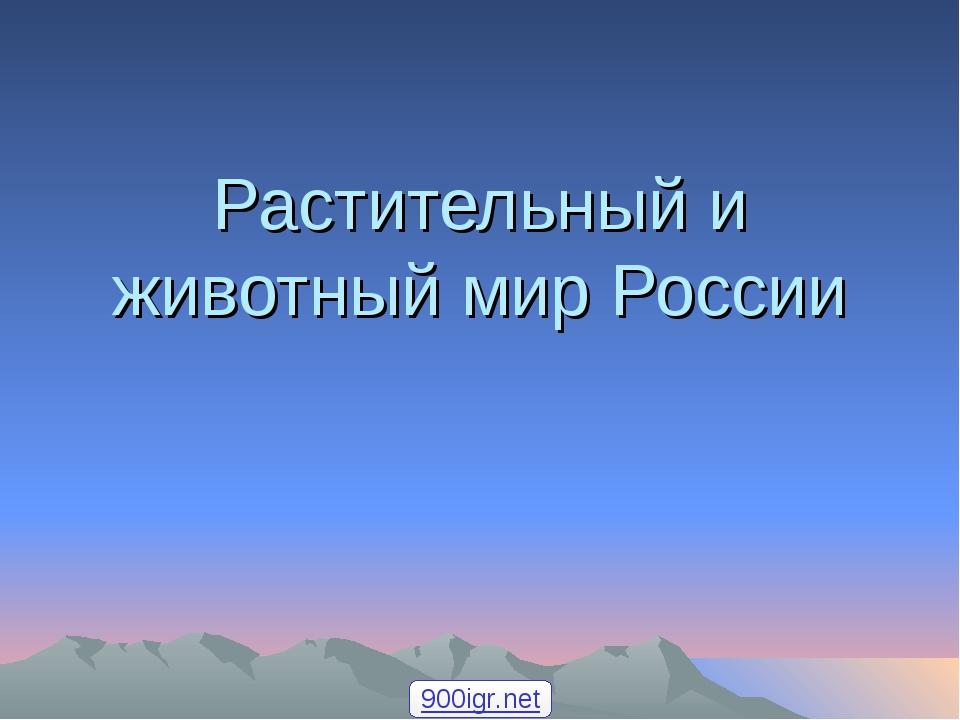 Растительный и животный мир России 900igr.net