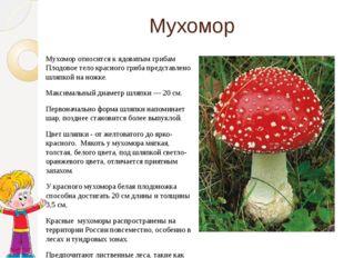 Мухомор Мухомор относится к ядовитым грибам Плодовое тело красного гриба пред