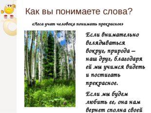 Как вы понимаете слова? Если внимательно вглядываться вокруг, природа – наш д