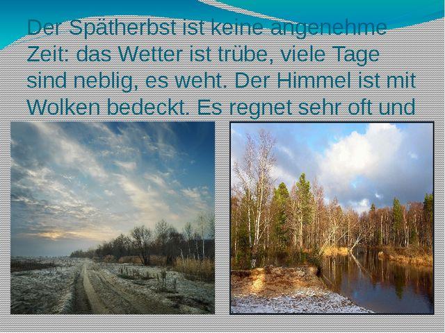 Der Spätherbst ist keine angenehme Zeit: das Wetter ist trübe, viele Tage sin...