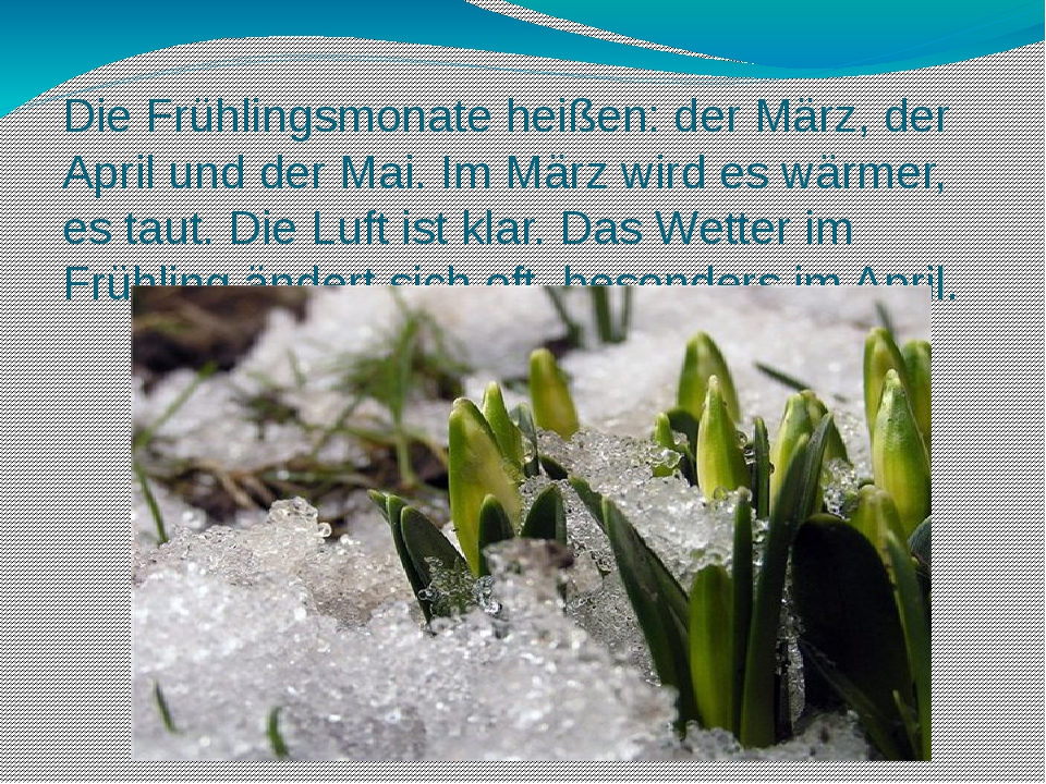 Die Frühlingsmonate heißen: der März, der April und der Mai. Im März wird es...