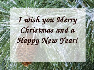 I wish you Merry Christmas and a Happy New Year!