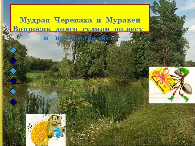 Мудрая Черепаха и Муравей Вопросик долго гуляли по лесу и проголодались.