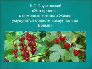 К.Г. Паустовский «Это процесс, с помощью которого Жизнь умудряется обвести в
