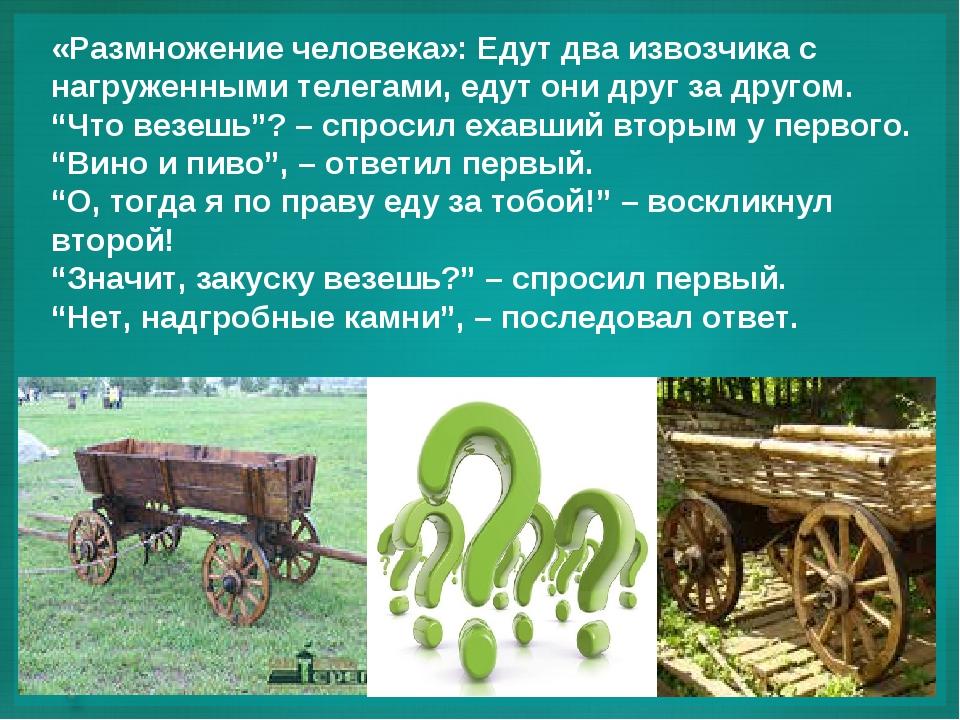 «Размножение человека»: Едут два извозчика с нагруженными телегами, едут они...