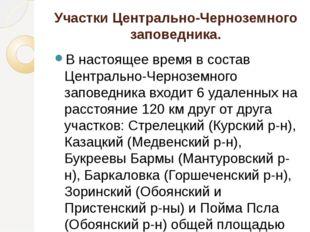Участки Центрально-Черноземного заповедника. В настоящее время в состав Центр