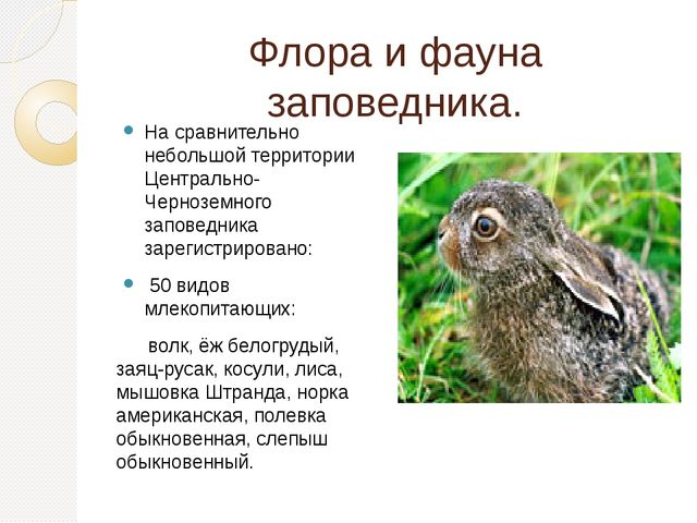 Флора и фауна заповедника. На сравнительно небольшой территории Центрально-Че...