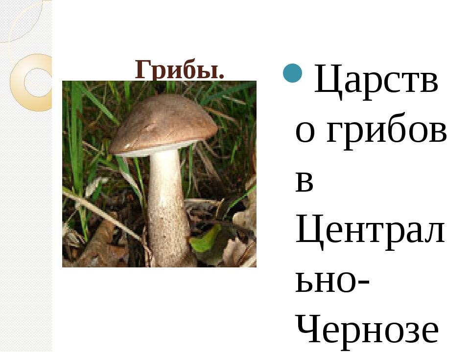 Грибы. Царство грибов в Центрально-Черноземном заповеднике насчитывает около...