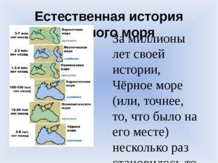 Естественная история Черного моря За миллионы лет своей истории, Чёрное море