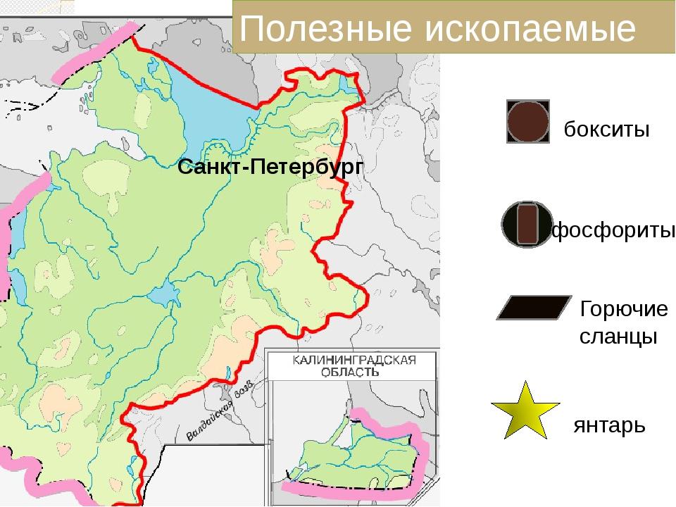Санкт-Петербург бокситы фосфориты Горючие сланцы янтарь Полезные ископаемые