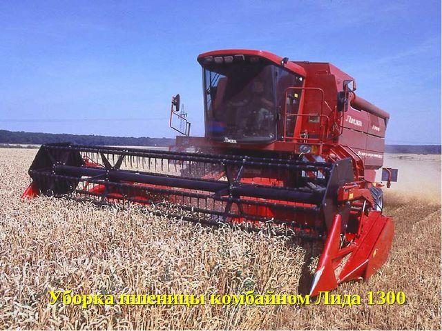 Уборка пшеницы комбайном Лида 1300