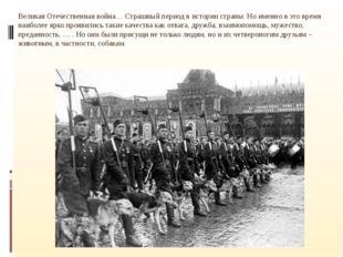 Великая Отечественная война… Страшный период в истории страны. Но именно в э
