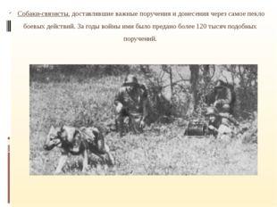 Собаки-связисты, доставлявшие важные поручения и донесения через самое пекло